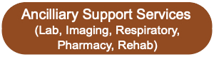 Ancillary Support Services