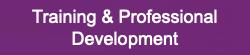 Training Professional Development